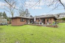 5 bed Detached Bungalow for sale in Chepstow Road, Newport