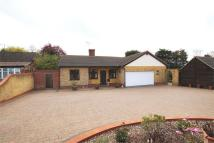 4 bed Detached Bungalow in London Road, Rawreth...
