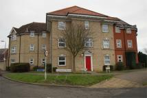 Ground Flat to rent in Haltwhistle Road...