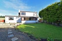 Detached property for sale in Carroch Farm Cottage...