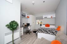 1 bedroom new Apartment in Kings Mill Lane...