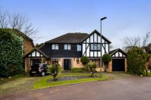 Detached house for sale in Westcott Close, Bickley...