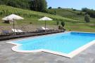 Pool and vineyards