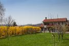2 bedroom Detached property in Alba, Cuneo, Piedmont