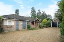 5 bedroom Detached home in Arford, Hampshire
