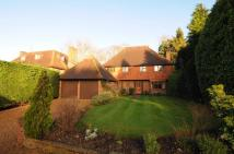 5 bedroom Detached house to rent in Esher