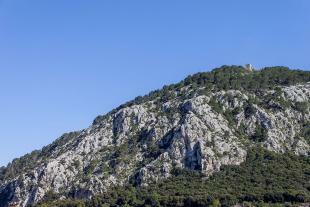 Puig de María