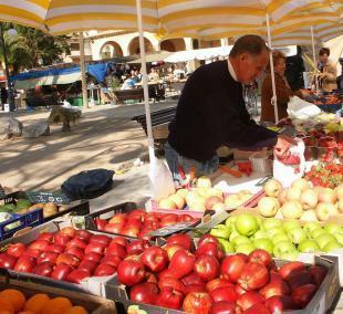 market_pol_fruit002
