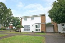 Link Detached House to rent in Hadrian Close...
