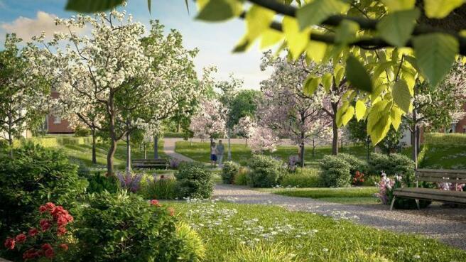 Landscape Open Space