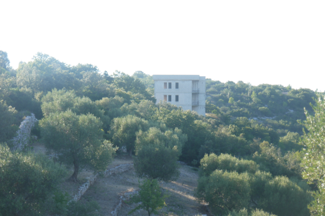 View to the house