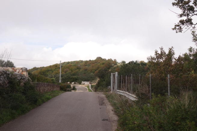 The local road