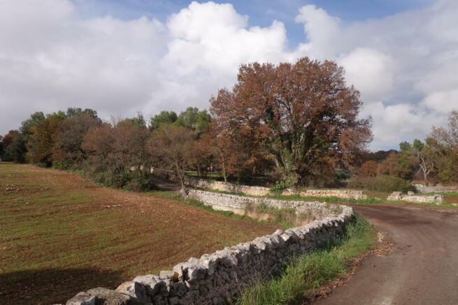 Road to the villa