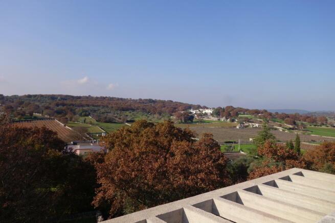 Views above pergola