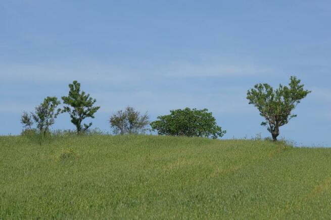 Area photos