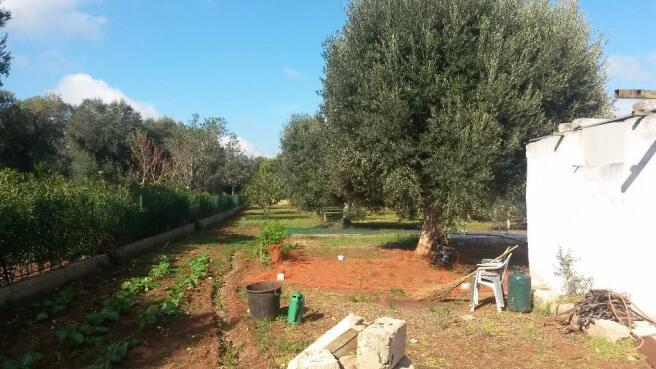 Views to rear garden