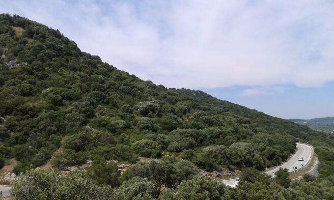 Views panoramic road