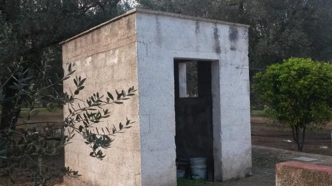 The outbuilding