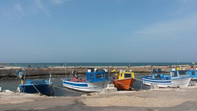 Fishing harbour