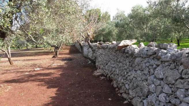 High stone wall