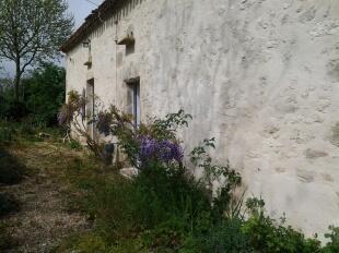façade springtime