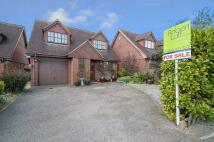 Halewick Lane Detached house for sale