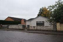 Bungalow for sale in Brackenhill Road, ML8