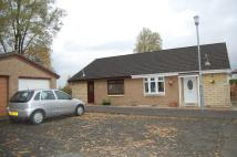 2 bed Semi-Detached Bungalow for sale in HOUSTON STREET, Wishaw...