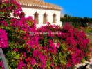 5 bed Detached Villa for sale in Pedreguer, Alicante...