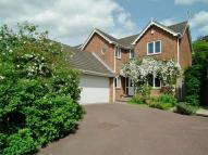 Detached property in Nursery Field, Buxted...