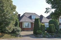 3 bed Detached Bungalow for sale in Willian Road, Hitchin