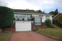Bungalow in Blaydon