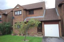 3 bedroom Link Detached House in Sunniside