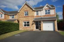4 bed Detached house in Burnopfield