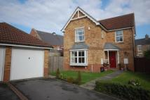 Detached house for sale in Hobson