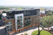 Apartment to rent in Catalpa Court...