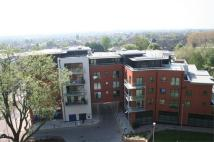 2 bed Apartment to rent in Catalpa Court...