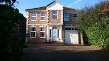 Detached property in High Road, Rayleigh...
