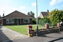 Detached Bungalow in NEWTON CLOSE, NORWICH NR4