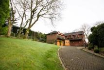 5 bedroom Detached home in Oakley Park...