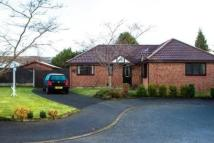 Greenstone Avenue Detached Bungalow for sale