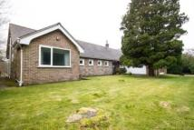 Detached Bungalow in Links Drive, Lostock...