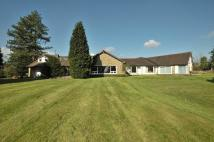 6 bedroom Detached Bungalow for sale in Davenport Lane...