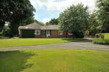 Detached Bungalow for sale in Agden Brow, Lymm