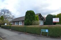 Westfield Drive Detached Bungalow for sale
