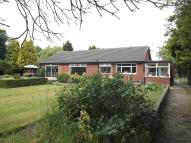 Detached Bungalow in Birchdale Road, Appleton...