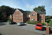 2 bedroom Ground Flat in Glastonbury Mews...