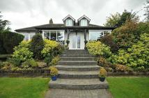 3 bed Detached Bungalow for sale in Delphfields Road...