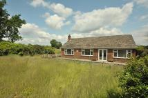 Detached Bungalow in Nook Lane, Antrobus, CW9