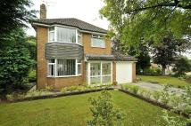 3 bed Detached property for sale in Pickering Crescent...